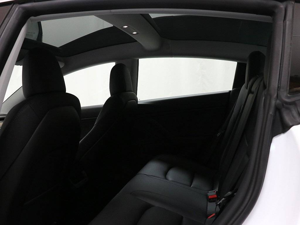 2020 Tesla Model 3 5YJ3E1EB7LF619215